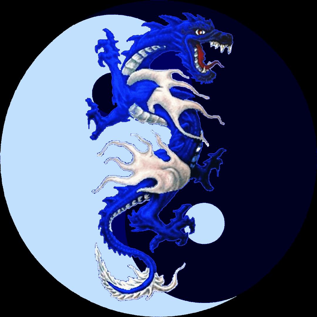Zarek A Dragon