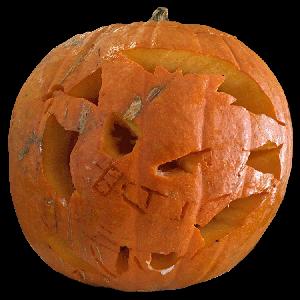 Koji's Pumpkin